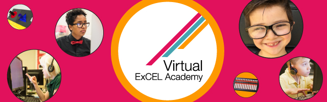 Link to APH Virtual ExCEL Academy registration.